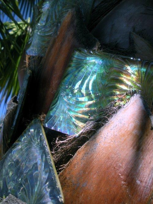 Eden-Living Glass-015