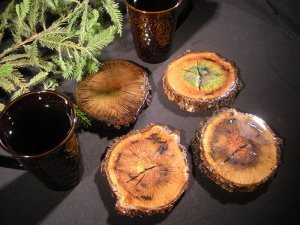 Moving-Color-Color-Changing-Tree-Coasters-160