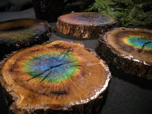 Moving-Color-Color-Changing-Tree-Coasters-172