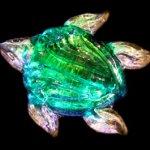 turtle4b